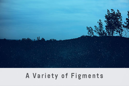 A Variety of Figments