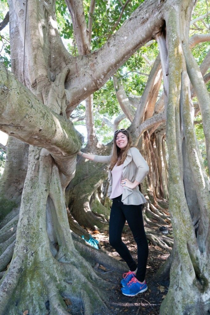 Jen posing by the Strangler Fig tree