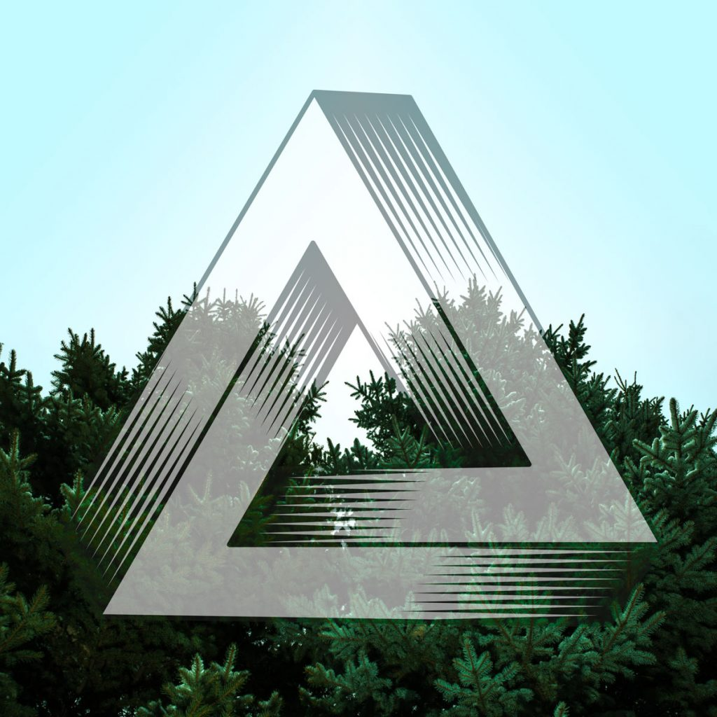 Triangle and the Evergreen